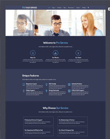 LT Blue Service – Free Responsive Business / Service WordPress theme