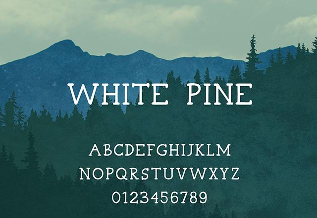 3White Pine free font