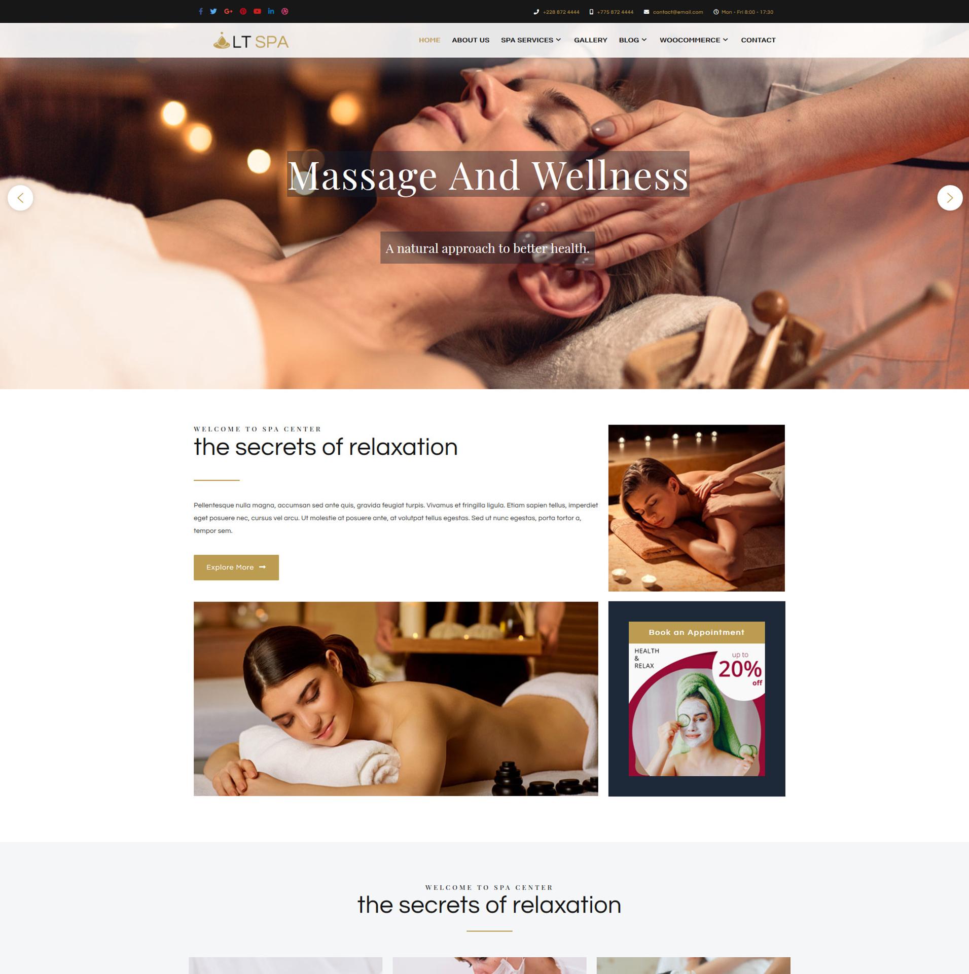 lt-spa-responsive-wordpress-theme