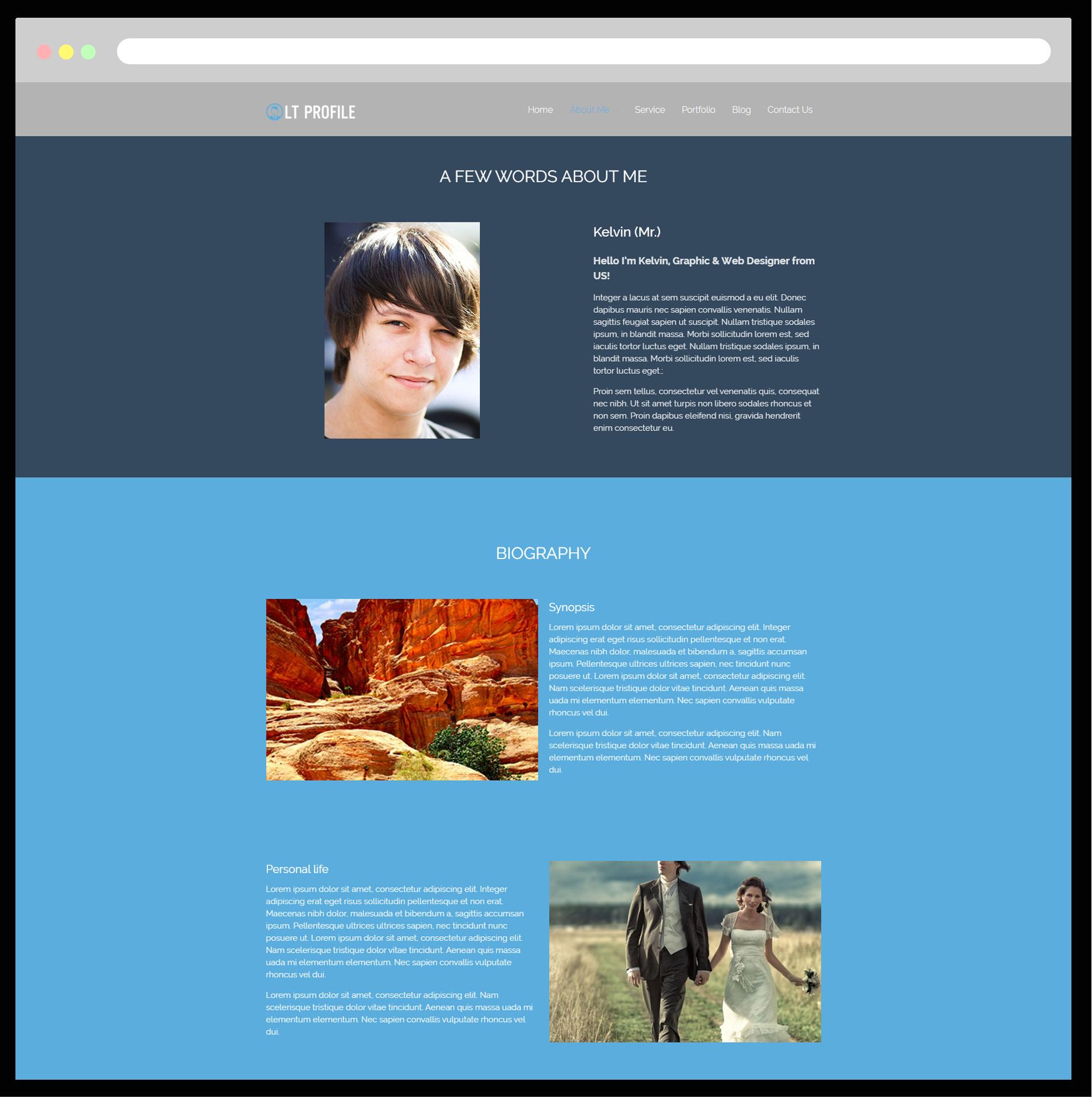 Lt Profile Free Responsive Cv Profile Wordpress Theme