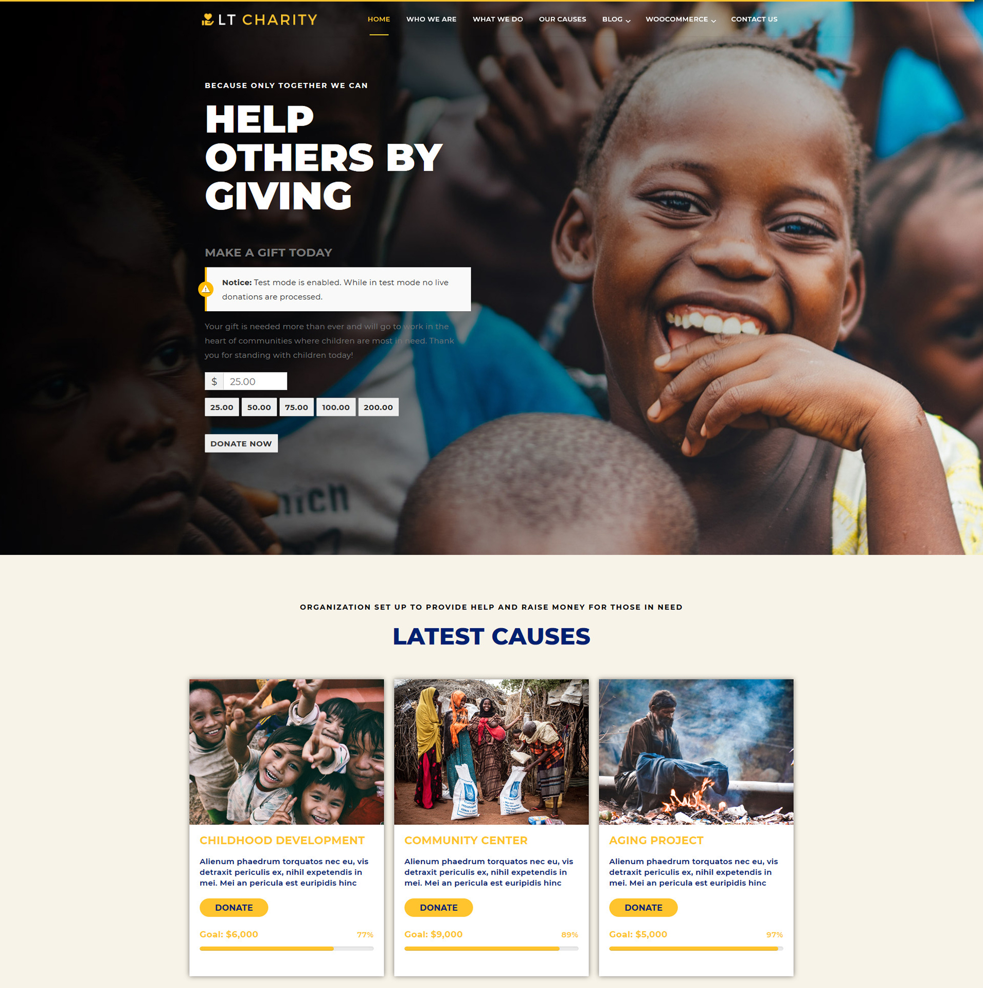 lt-charity-wordpress-theme-full