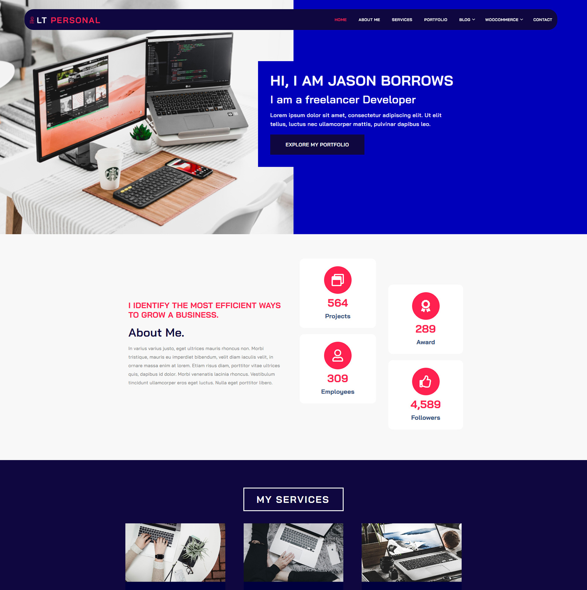 lt-personal-wordpress-theme-full