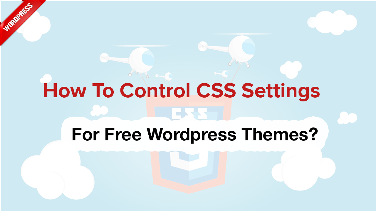 How to control css settings for Free WordPress themes?