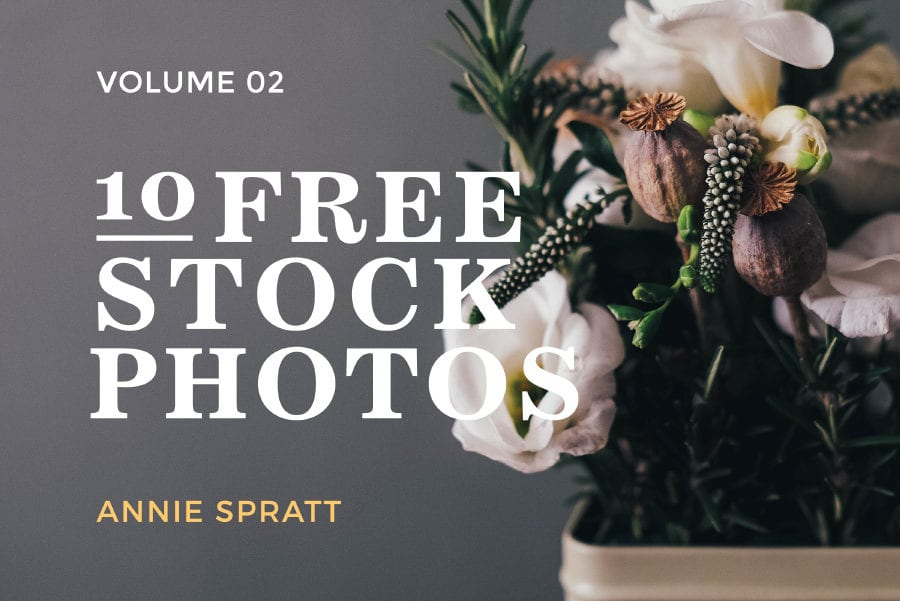 Curated Stock Photos Free Download Vol 02