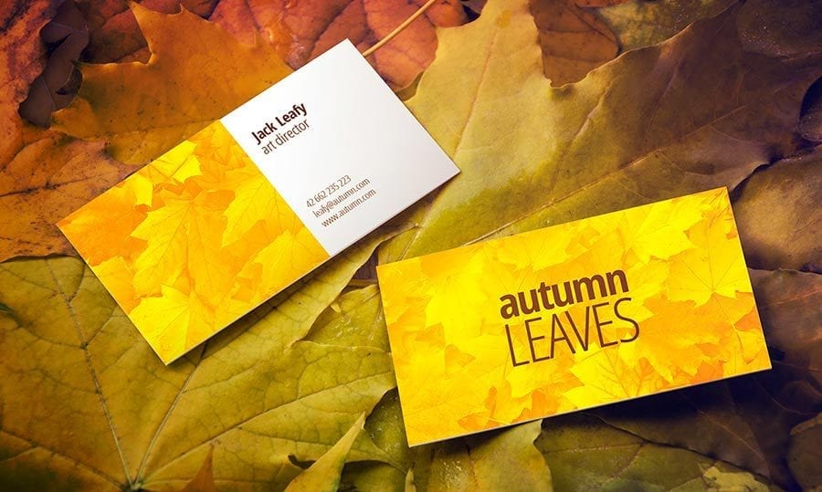 Free Autumn Leaves Business Card Mock-up