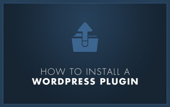 How To Install A WordPress Plugin For Beginners