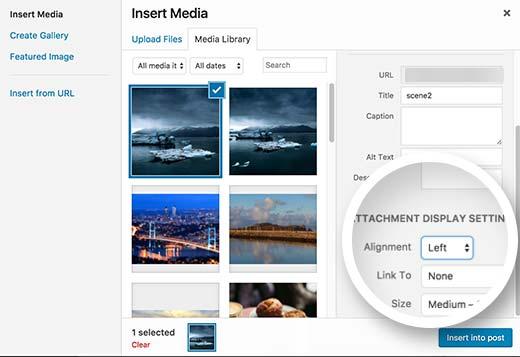 How to Align Image in WordPress