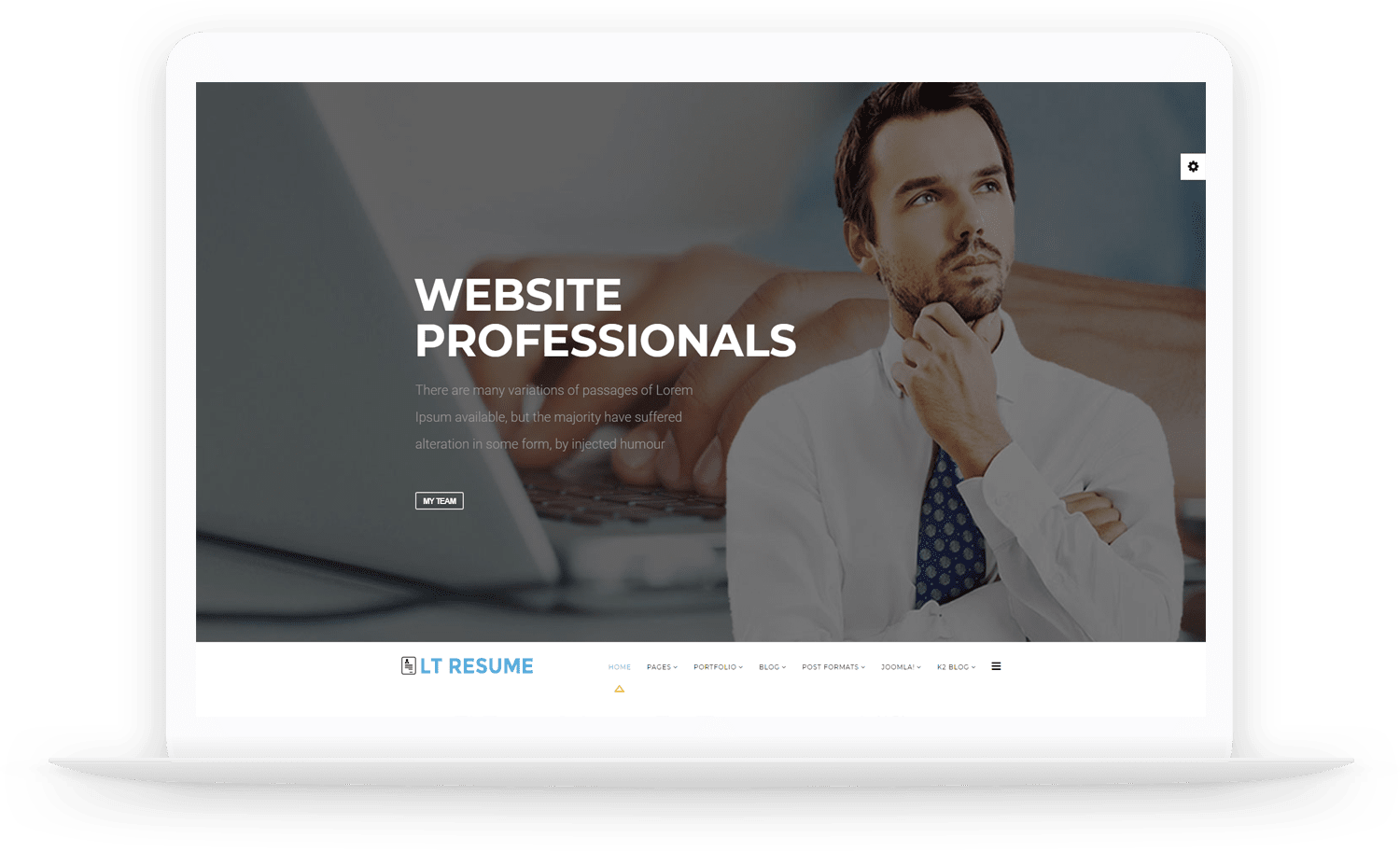 LT-Resume-Joomla-template
