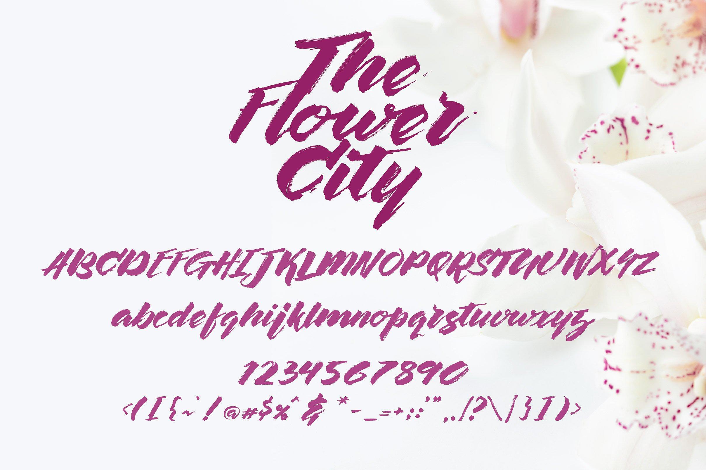 the-flower-city-script-free-font-1