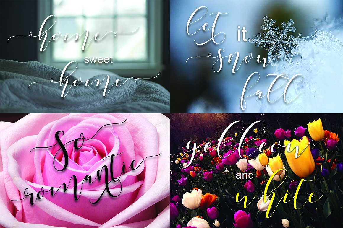 Shania Script Free Font
