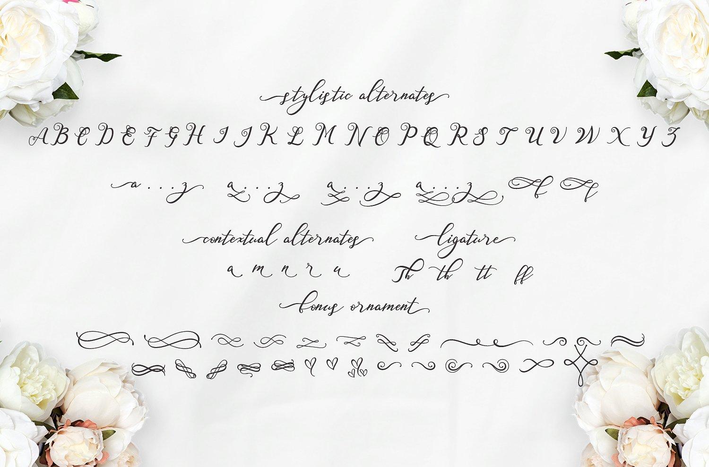 Nazeefa - Modern Free Script Typeface