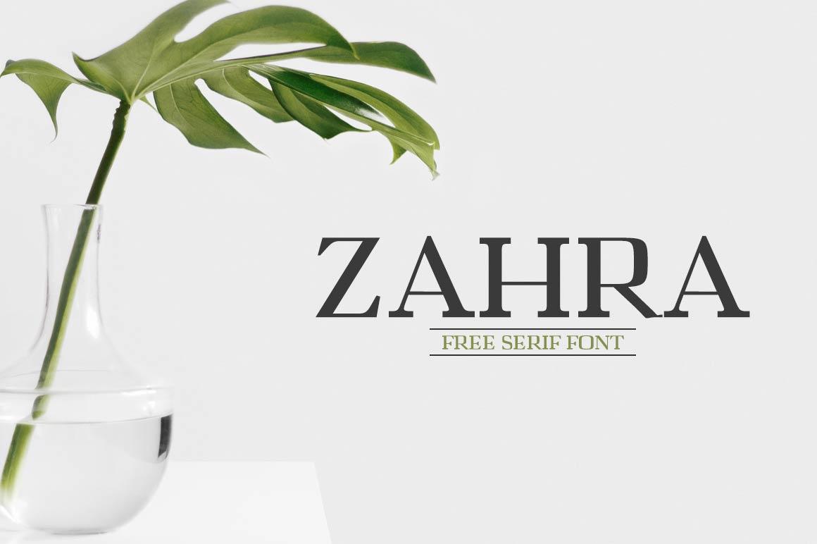 Zahra Free Serif Typeface