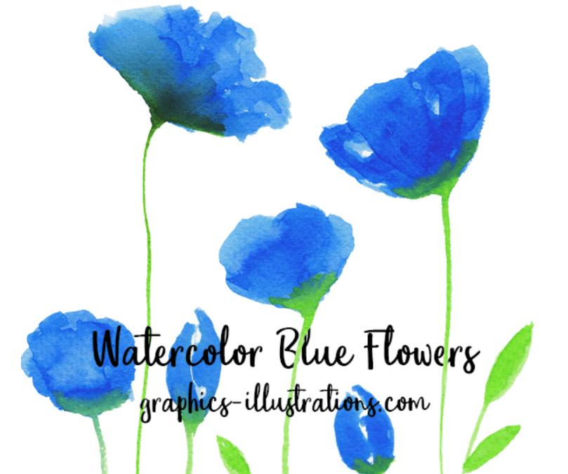 Blue Flower Free Watercolor