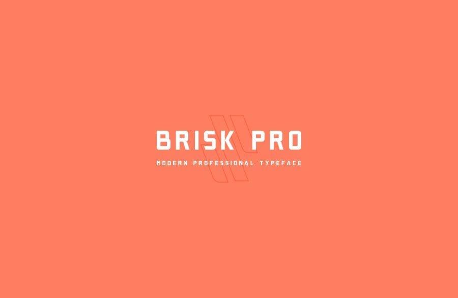 Brisk Pro Display Sans Serif Font