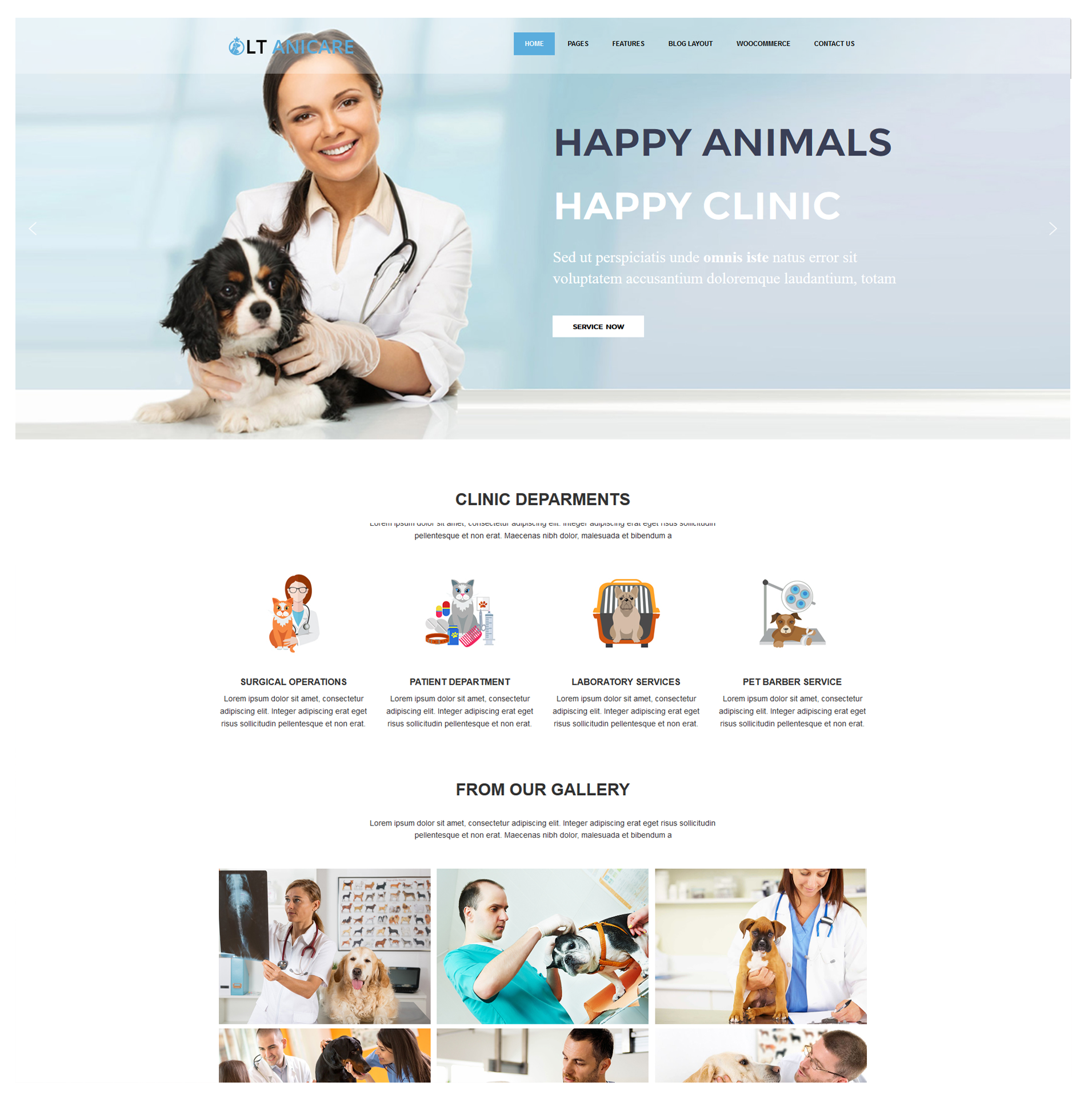 LT-Anicare-free-responsite-WordPress-Theme