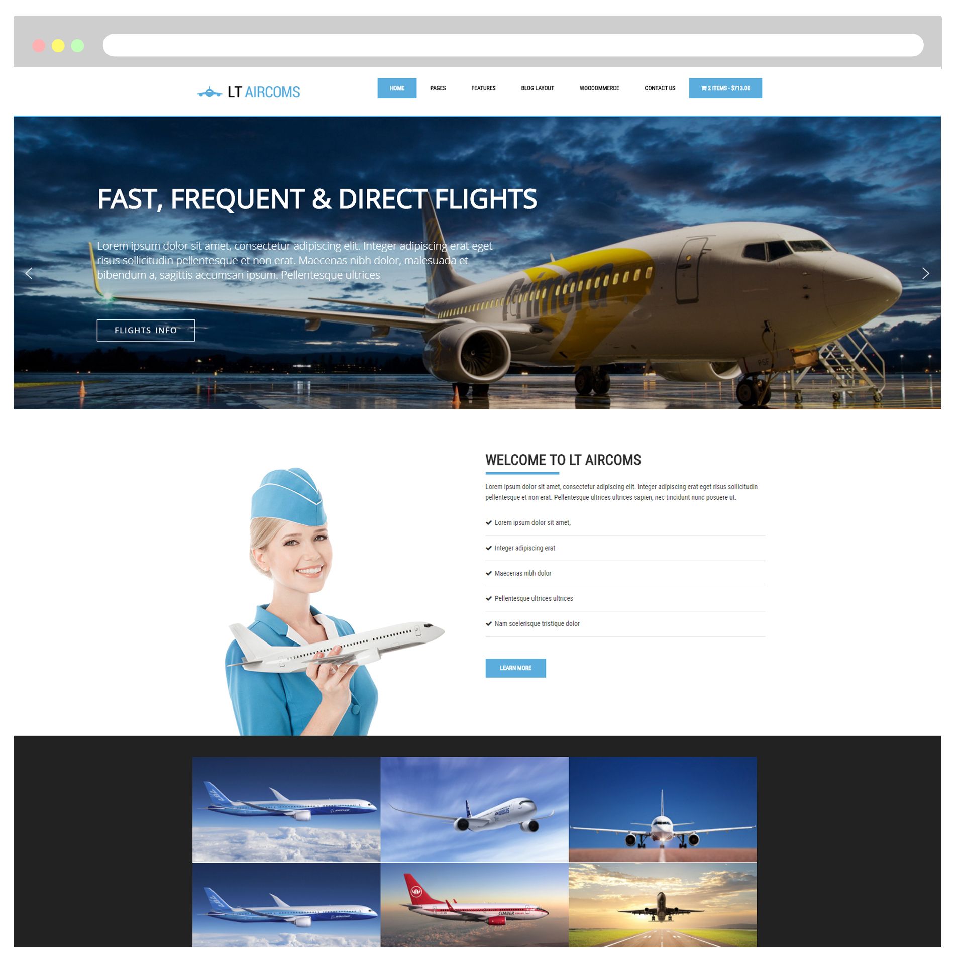lt-aircoms-free-private-airline-WordPress-Theme