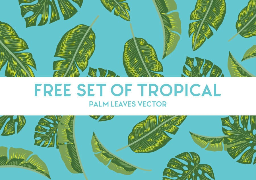 Free Set Of Tropical Palm Leaves Vector