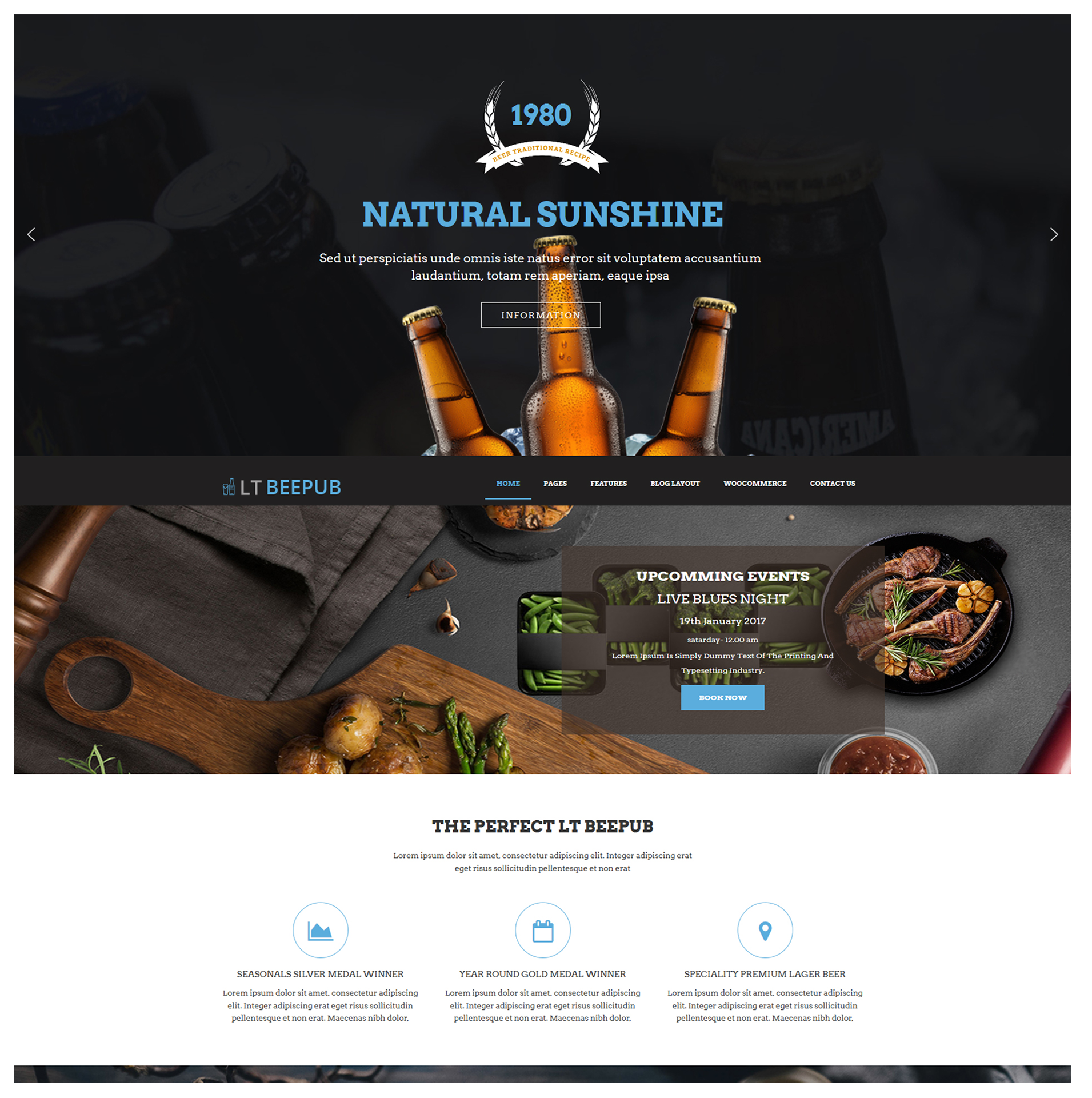 lt-beepub-responsive-worspress-theme-screenshot