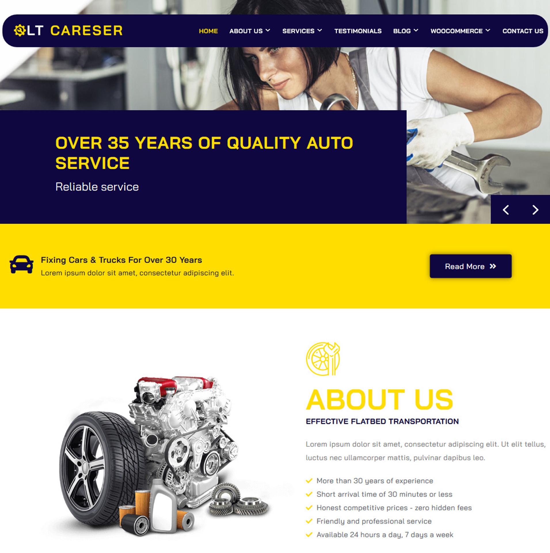 lt-careser-free-wordpress-theme-screen