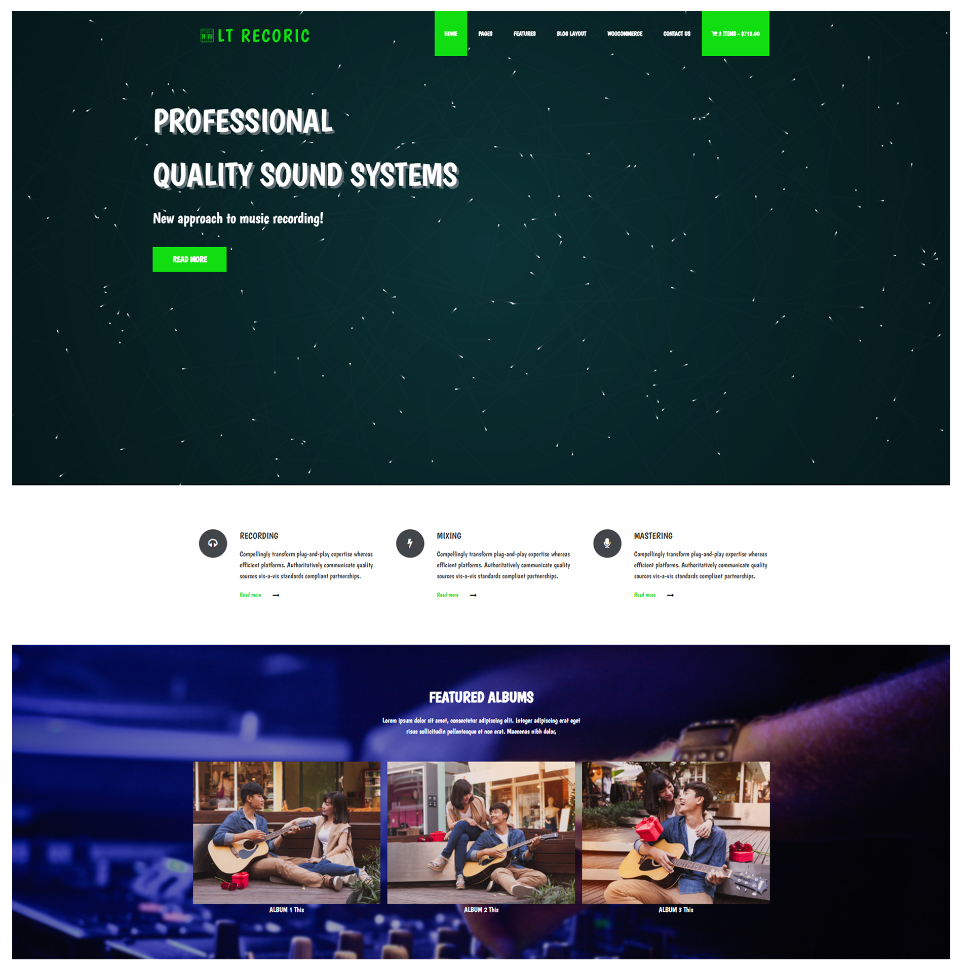 lt-recoric-free-responsive-wordpress-theme-screenshot