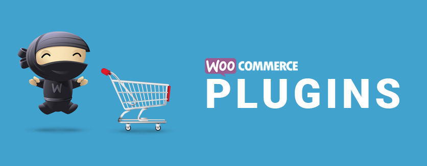 22 Necessary WooCommerce WordPress Plugins That You Should Not Ignore