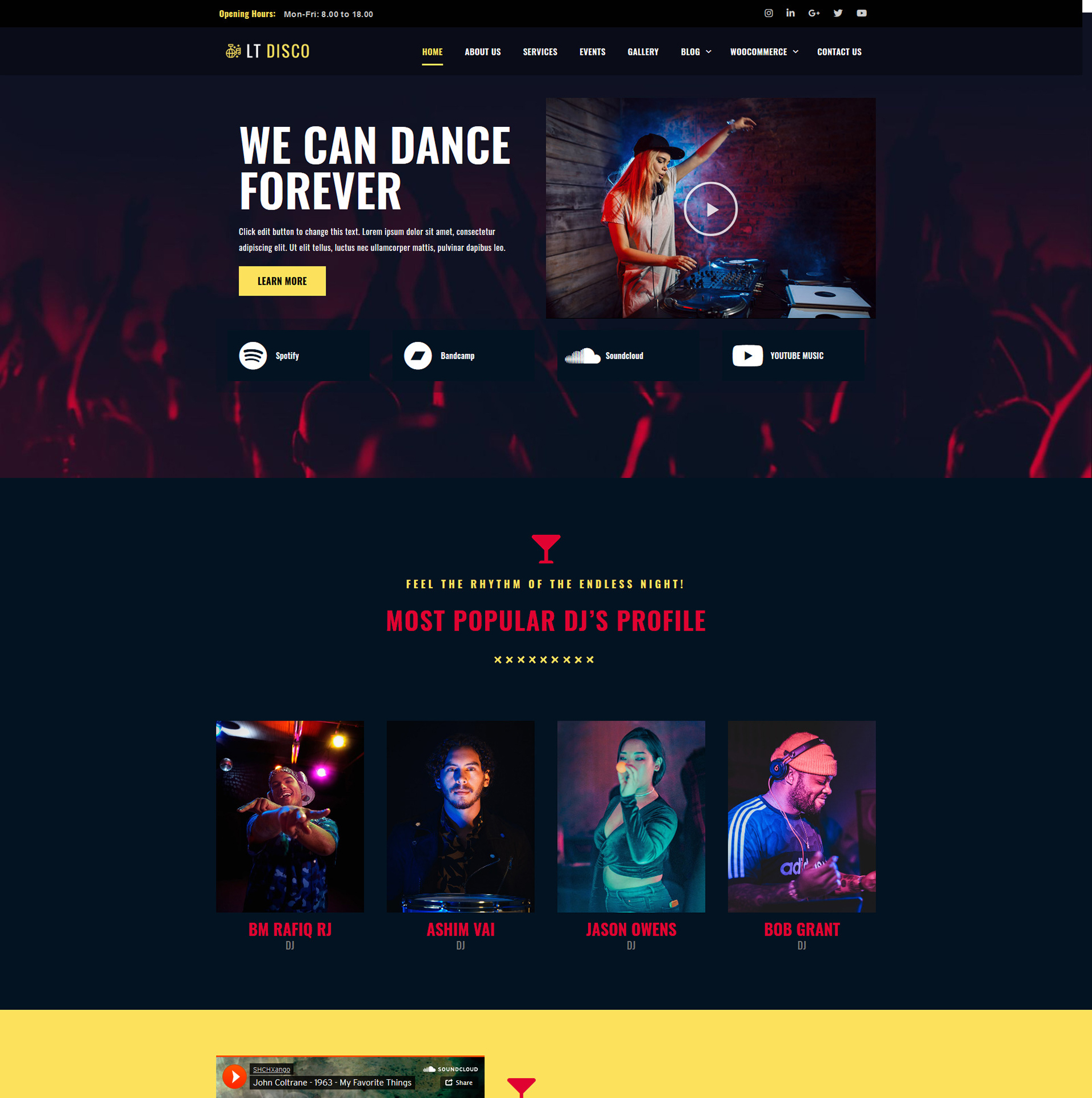 lt-discowordpress-theme-full