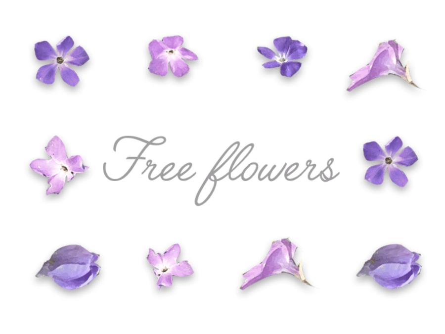 Set Of 9 Violet Flower Elements
