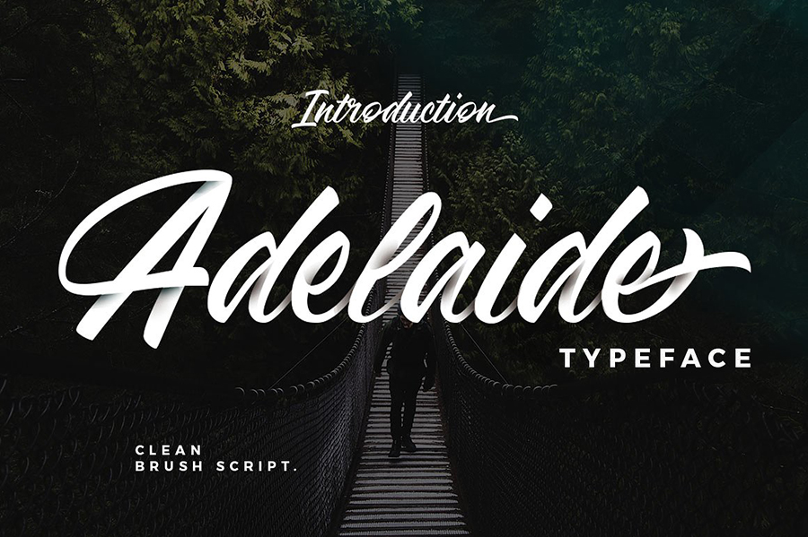 Adelaide calligraphy script fonts responsive joomla and wordpress adelaide calligraphy script fonts stopboris Images