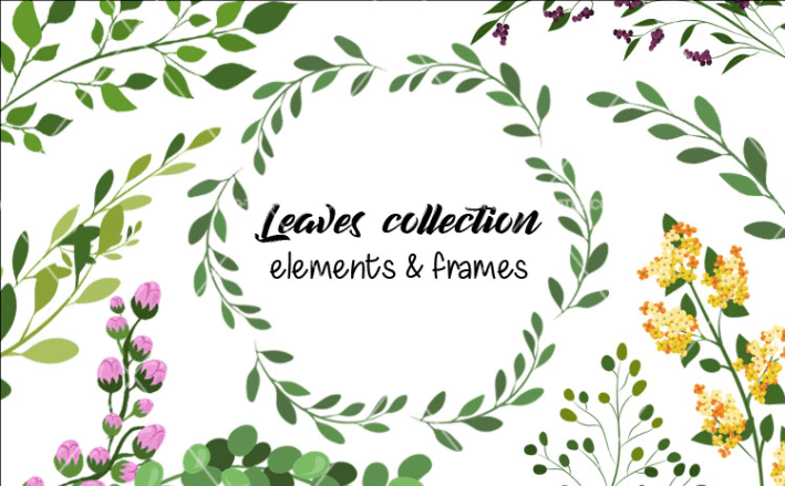 Collection Of Free Leaf Vector