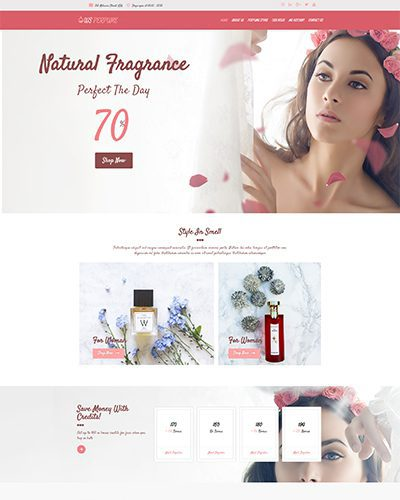 WS Perfume – Responsive Cosmetic Store WooCommerce WordPress theme