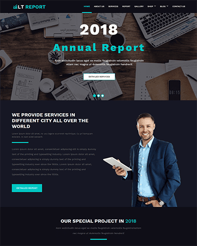 LT Report Onepage – Free Financial Reporting website templates