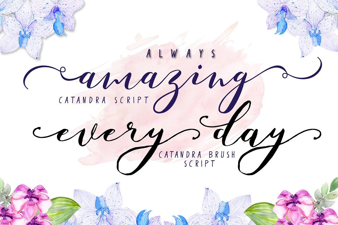 Catandra Calligraphy Script Font