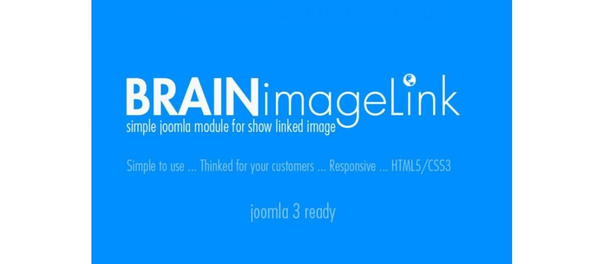 Brain Image Link