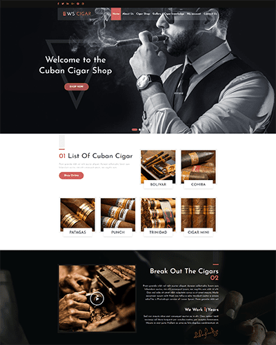 WS Cigar – Premium Cigar Shop WordPress themes