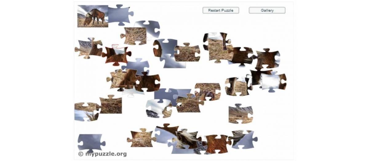 MyPuzzle Jigsaw