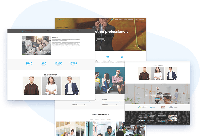 lt-social-company-free-wordpress-theme-elementor