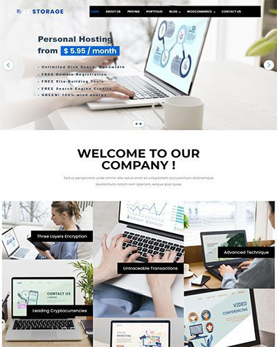 LT Storage – Free responsive wordpress theme for hosting