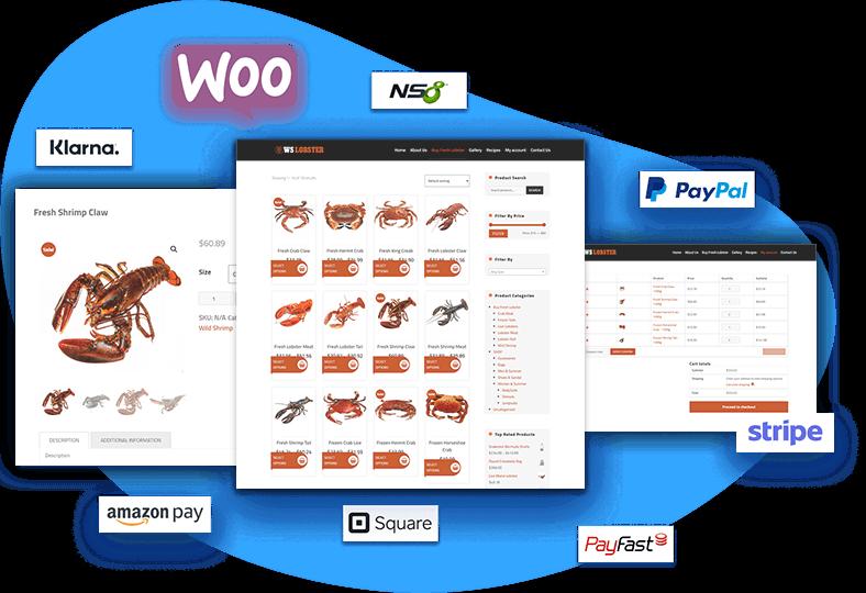 ws-lobster-free-wordpress-theme-contact