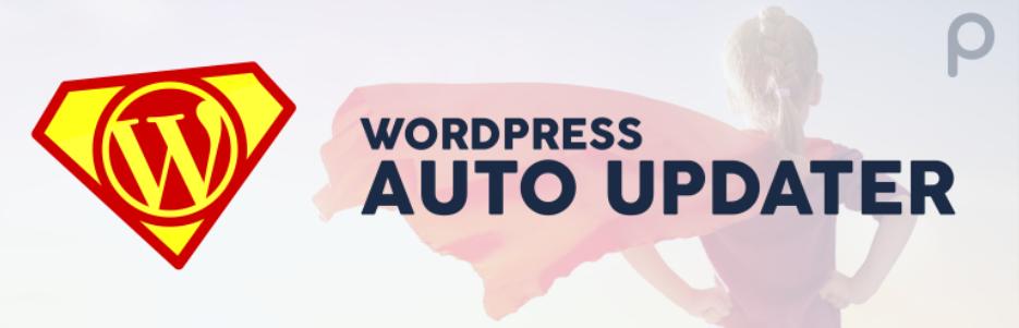 Top 8 Must-have WordPress Auto-update Plugin In 2021