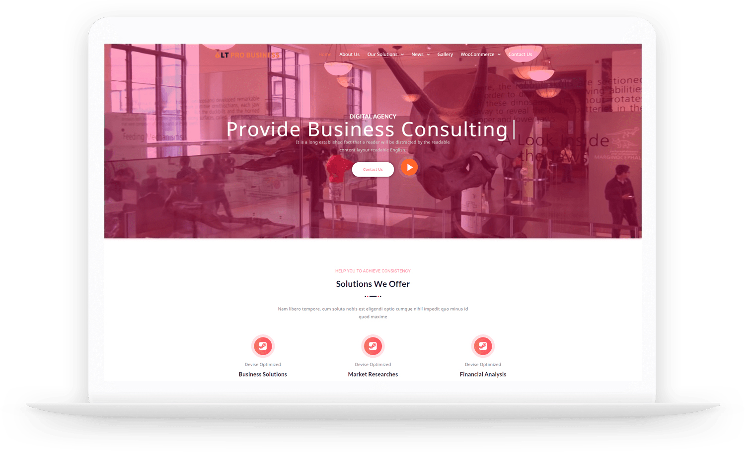 LT-Pro-Business-wordpress-theme
