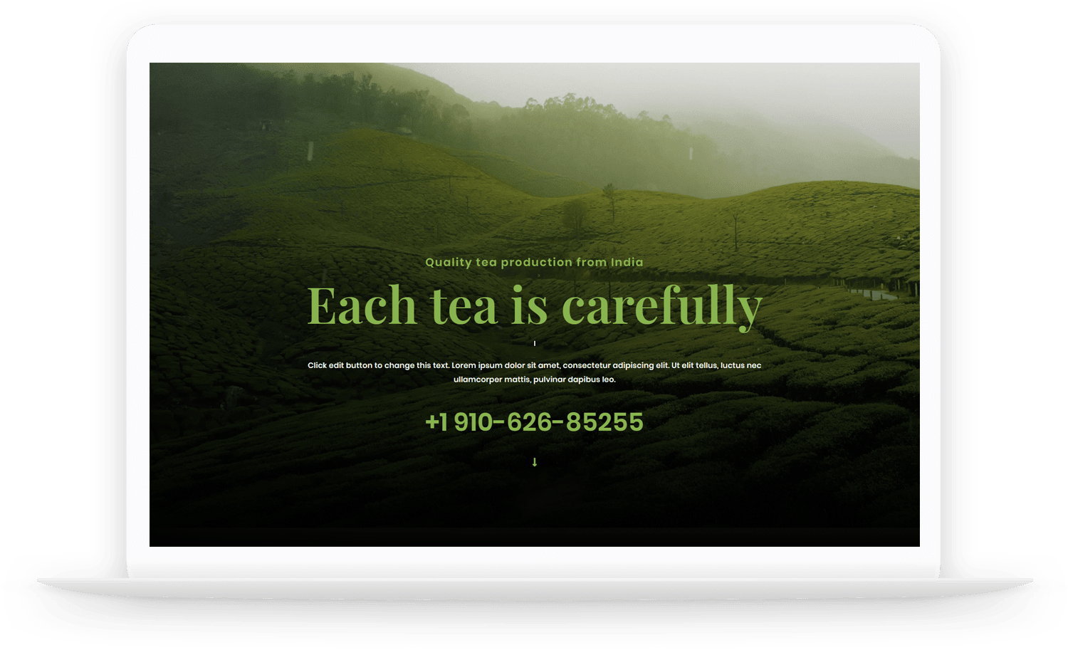 LT-Tea-wordpress-theme