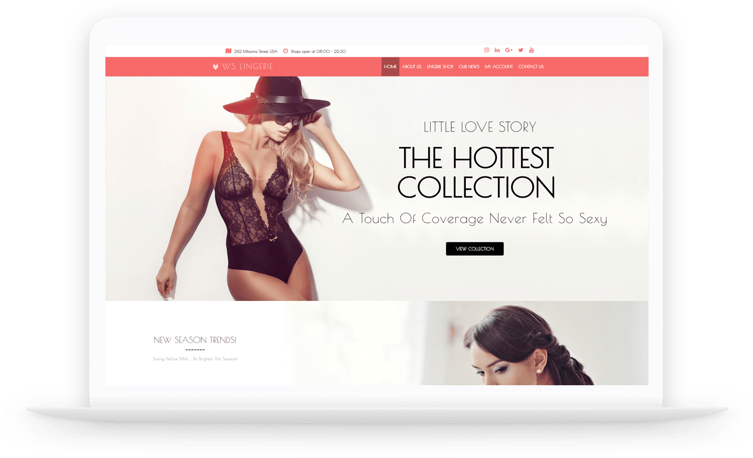 WS-Lingerie-wordpress-theme