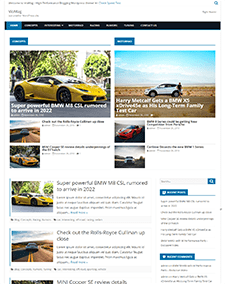 VioMag – Free Responsive Blog WordPress theme