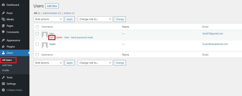 add author info box with WordPress theme 1